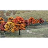 "WDS1577  3""-5"" Fall Deciduous Trees - 14 Pack"